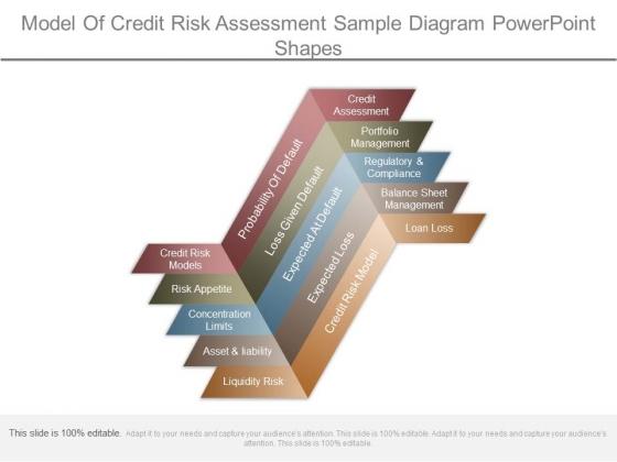 Model Of Credit Risk Assessment Sample Diagram Powerpoint Shapes