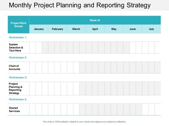 Monthly Project Planning And Reporting Strategy Ppt Powerpoint Presentation Styles File Formats