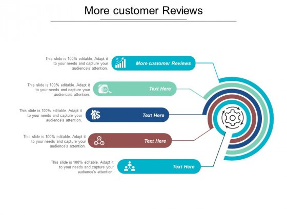 More Customer Reviews Ppt PowerPoint Presentation Outline Examples