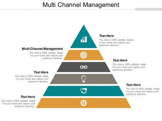 Multi Channel Management Ppt PowerPoint Presentation Layouts Topics Cpb