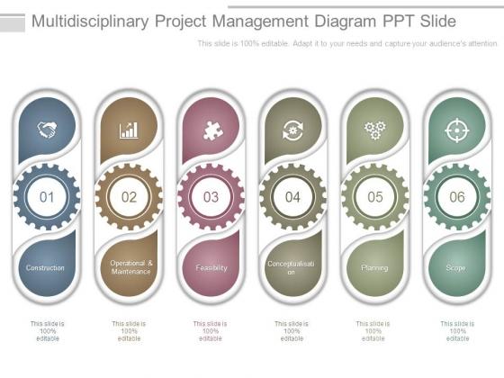Multidisciplinary Project Management Diagram Ppt Slide