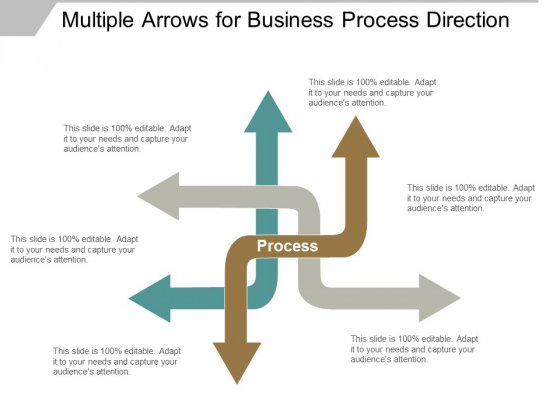 Multiple Arrows For Business Process Direction Ppt Powerpoint Presentation Layouts Icon