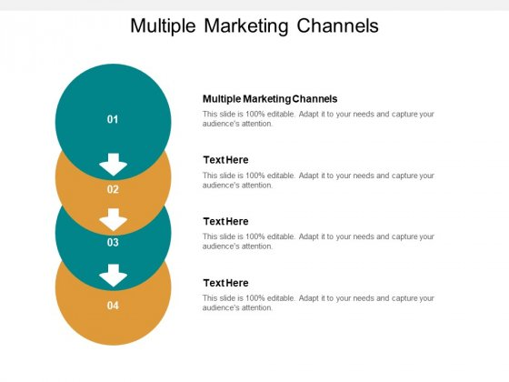 Multiple Marketing Channels Ppt PowerPoint Presentation Infographic Template Infographic Template Cpb