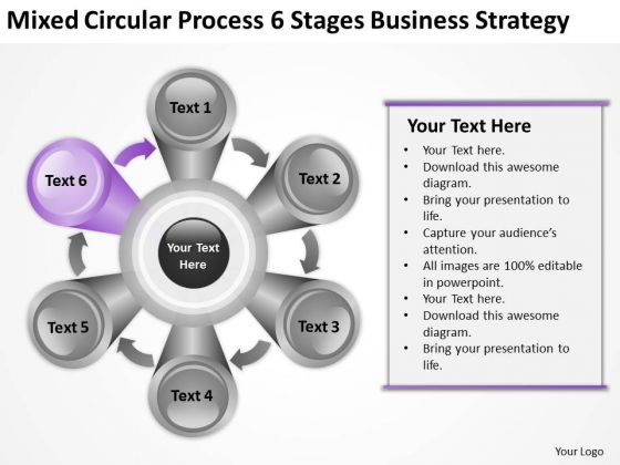 Mixed Circular Process 6 Stages New Business Strategy Ppt Plan Online PowerPoint Slides