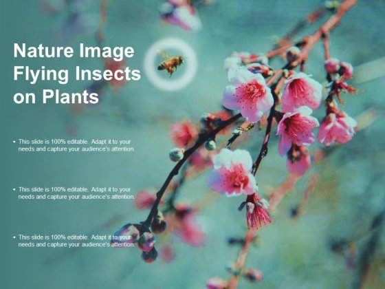 Nature Image Flying Insects On Plants Ppt PowerPoint Presentation Portfolio Layout Ideas