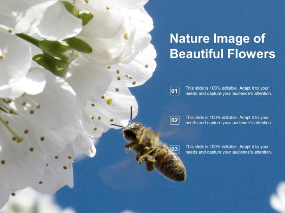 Nature Image Of Beautiful Flowers Ppt PowerPoint Presentation Portfolio Slide Portrait