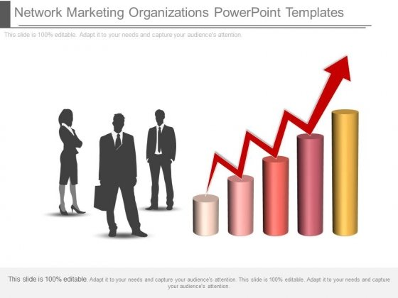 Network Marketing Organizations Powerpoint Templates