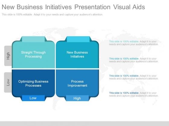 New Business Initiatives Presentation Visual Aids