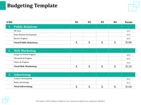 New Commodity Reveal Initiative Budgeting Template Ppt Infographics Designs PDF