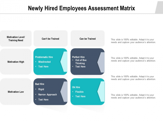 Newly Hired Employees Assessment Matrix Ppt PowerPoint Presentation Example PDF