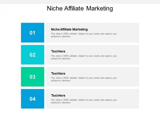 Niche Affiliate Marketing Ppt PowerPoint Presentation Show Examples Cpb