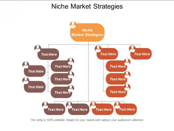 Niche Market Strategies Ppt PowerPoint Presentation Styles