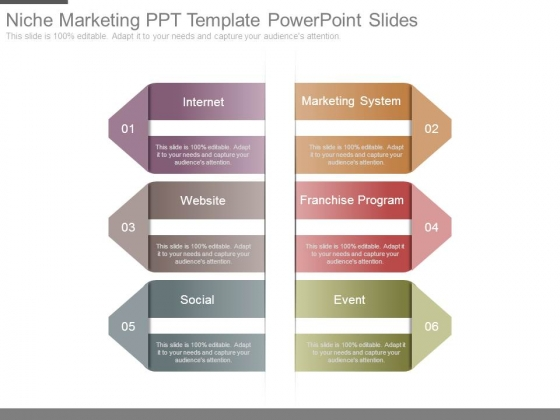 Niche Marketing Ppt Template Powerpoint Slides