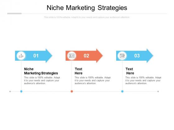 Niche Marketing Strategies Ppt PowerPoint Presentation Infographics Slideshow Cpb