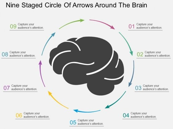 Nine Staged Circle Of Arrows Around The Brain Powerpoint Template