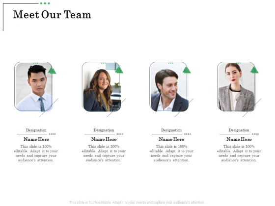 Non Current Assets Reassessment Meet Our Team Ppt Infographic Template Maker PDF