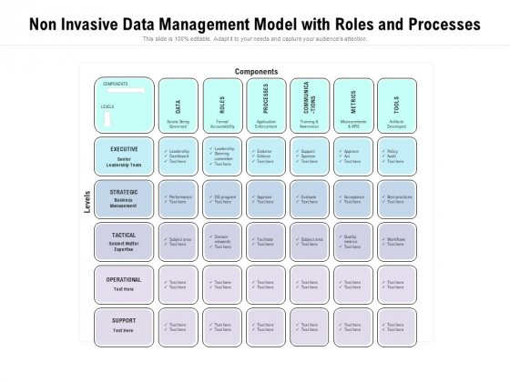 Non Invasive Data Management Model With Roles And Processes Ppt PowerPoint Presentation Gallery Slideshow PDF