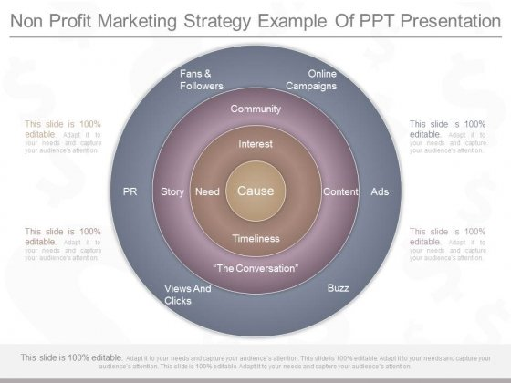 Non Profit Marketing Strategy Example Of Ppt Presentation
