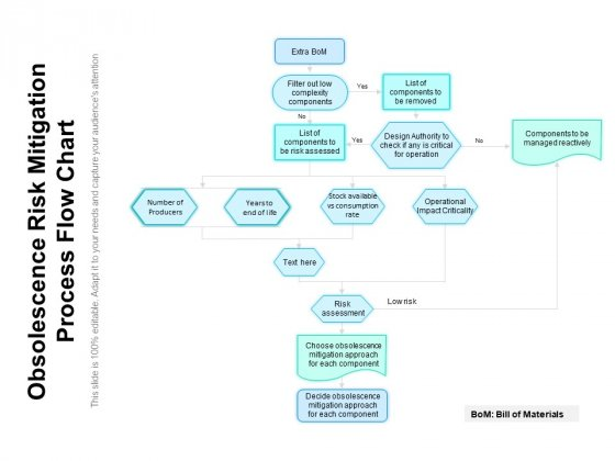 Obsolescence Risk Mitigation Process Flow Chart Ppt PowerPoint Presentation File Infographics PDF