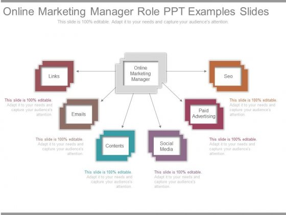 Online Marketing Manager Role Ppt Examples Slides - PowerPoint ...