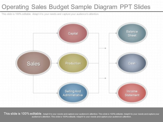Operating Sales Budget Sample Diagram Ppt Slides  Powerpoint Templates