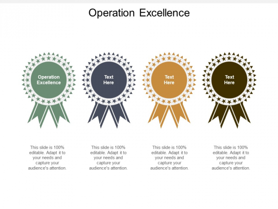 Operation Excellence Ppt PowerPoint Presentation Pictures Vector Cpb