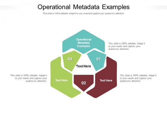 Operational Metadata Examples Ppt PowerPoint Presentation Inspiration File Formats Cpb Pdf