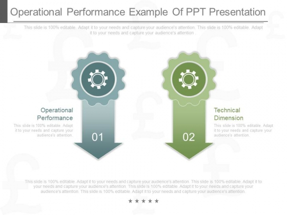 Operational Performance Example Of Ppt Presentation