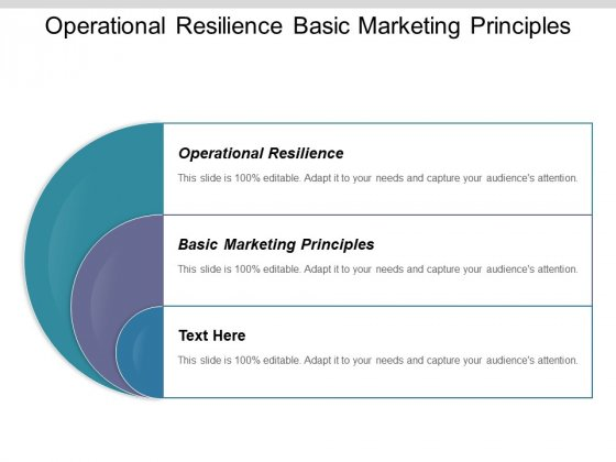 Operational Resilience Basic Marketing Principles Ppt PowerPoint Presentation Infographic Template Visuals