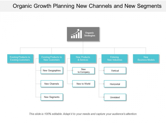 Organic Growth Planning New Channels And New Segment Ppt Powerpoint Presentation Icon Example Introduction