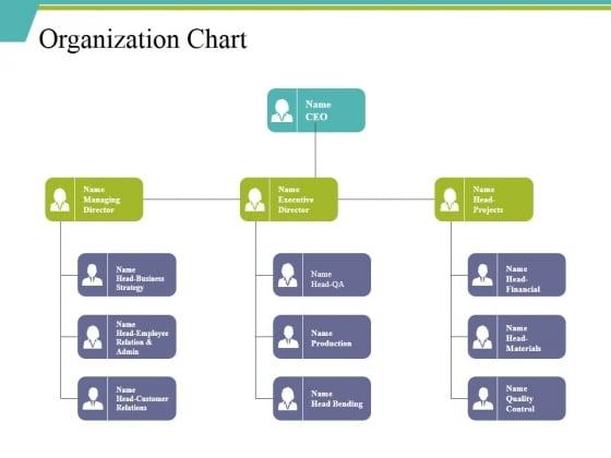 Organization Chart Ppt PowerPoint Presentation File Background Designs