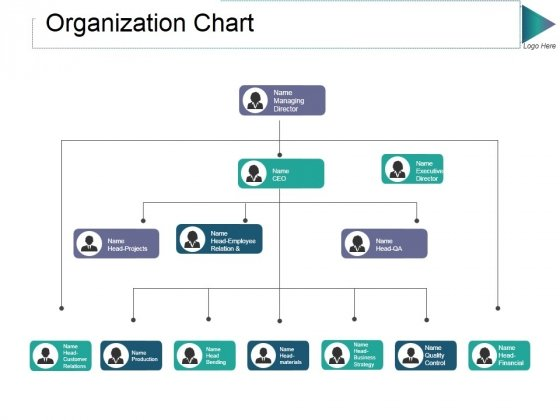 Organization Chart Ppt PowerPoint Presentation Gallery Ideas