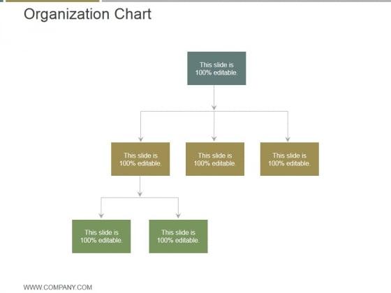 Organization Chart Ppt PowerPoint Presentation Good