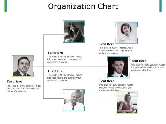 Organization Chart Ppt PowerPoint Presentation Ideas Graphics Download