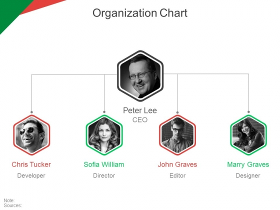 Organization Chart Ppt PowerPoint Presentation Ideas Tips