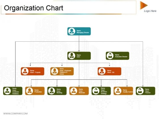 Organization Chart Ppt PowerPoint Presentation Model