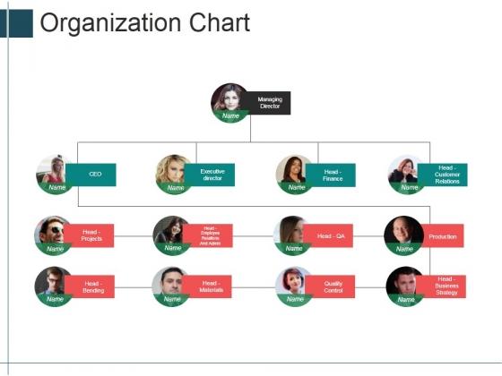 Organization Chart Ppt PowerPoint Presentation Portfolio Shapes