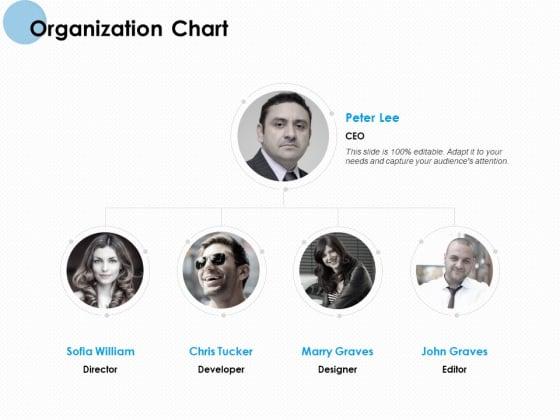 Organization Chart Ppt PowerPoint Presentation Portfolio Show