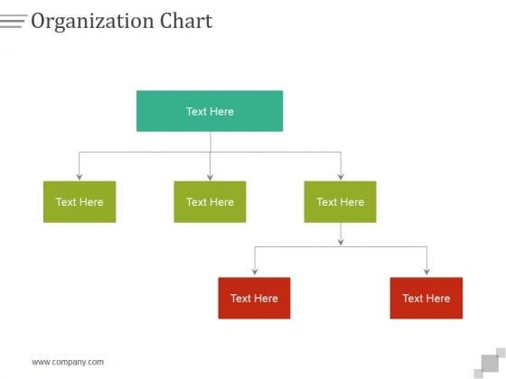 Organization Chart Ppt PowerPoint Presentation Professional