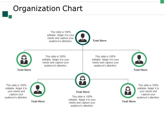 Organization Chart Ppt PowerPoint Presentation Slides Clipart