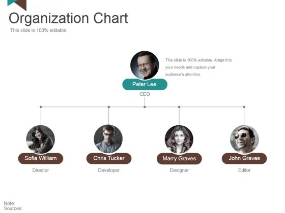 Organization Chart Ppt PowerPoint Presentation Styles Outfit