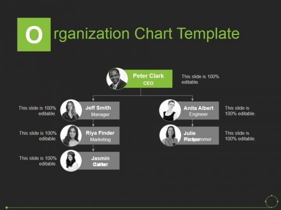 Organization Chart Template Ppt Powerpoint Presentation Gallery