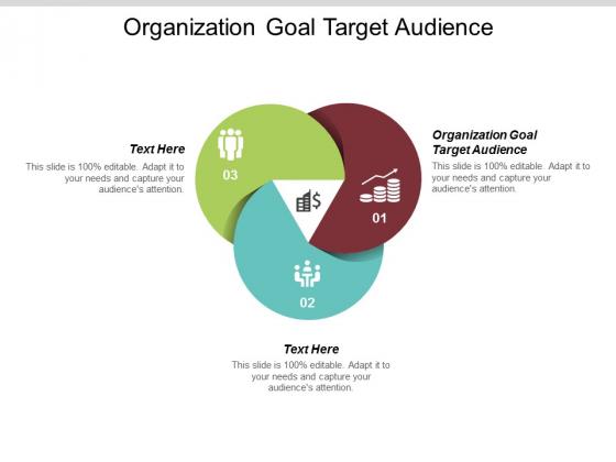 Organization Goal Target Audience Ppt PowerPoint Presentation Slides Information Cpb