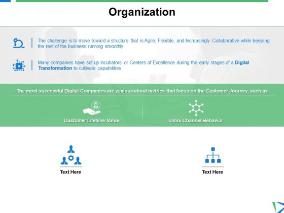 Organization Marketing Planning Ppt PowerPoint Presentation Show Graphics Pictures