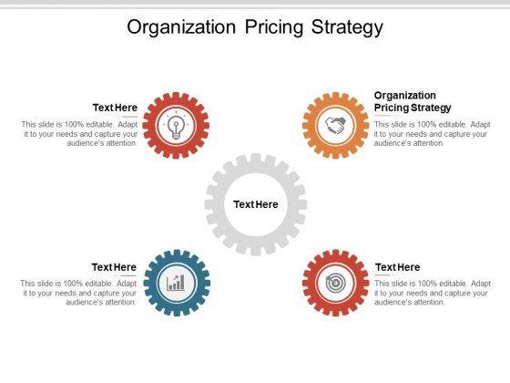 Organization Pricing Strategy Ppt PowerPoint Presentation Inspiration Microsoft Cpb
