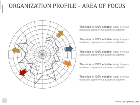 Organization Profile Area Of Focus Ppt PowerPoint Presentation Slides