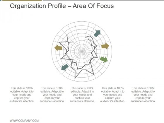 Organization Profile Area Of Focus Ppt PowerPoint Presentation Visual Aids