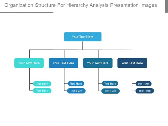 Organization Structure For Hierarchy Analysis Presentation Images