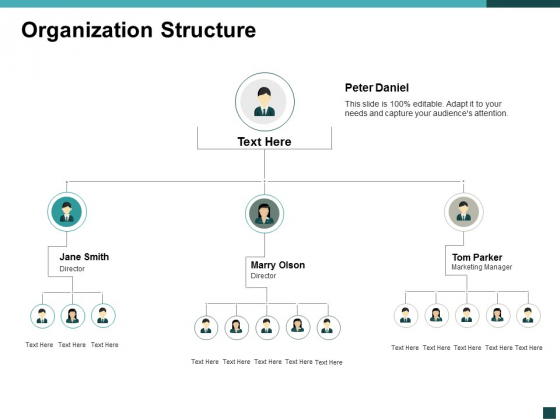 Organization Structure Management Ppt Powerpoint Presentation Ideas Example