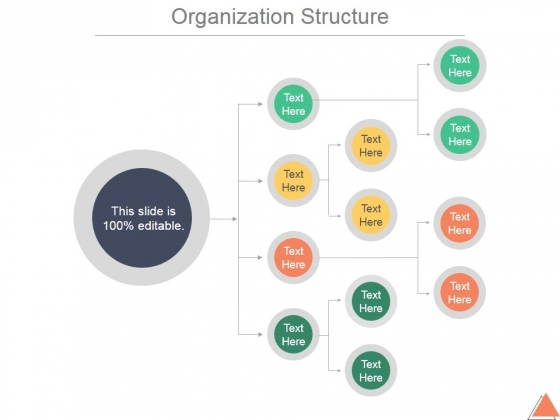 Organization Structure Ppt PowerPoint Presentation Infographic Template